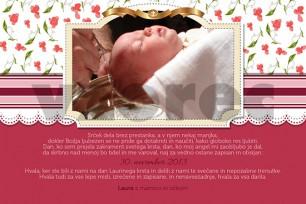 Zahvala ob krstu 11